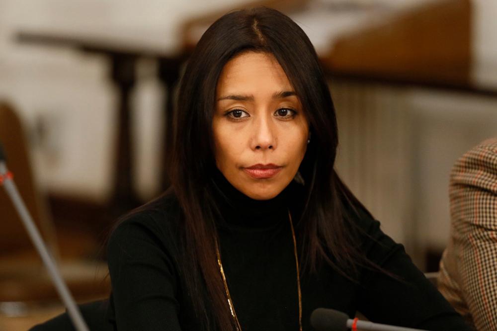 Presentan querella contra Diputada Leuquen por incidente en local de la  Condes. La parlamentaria ofreció disculpas públicas | Radio Las Nieves